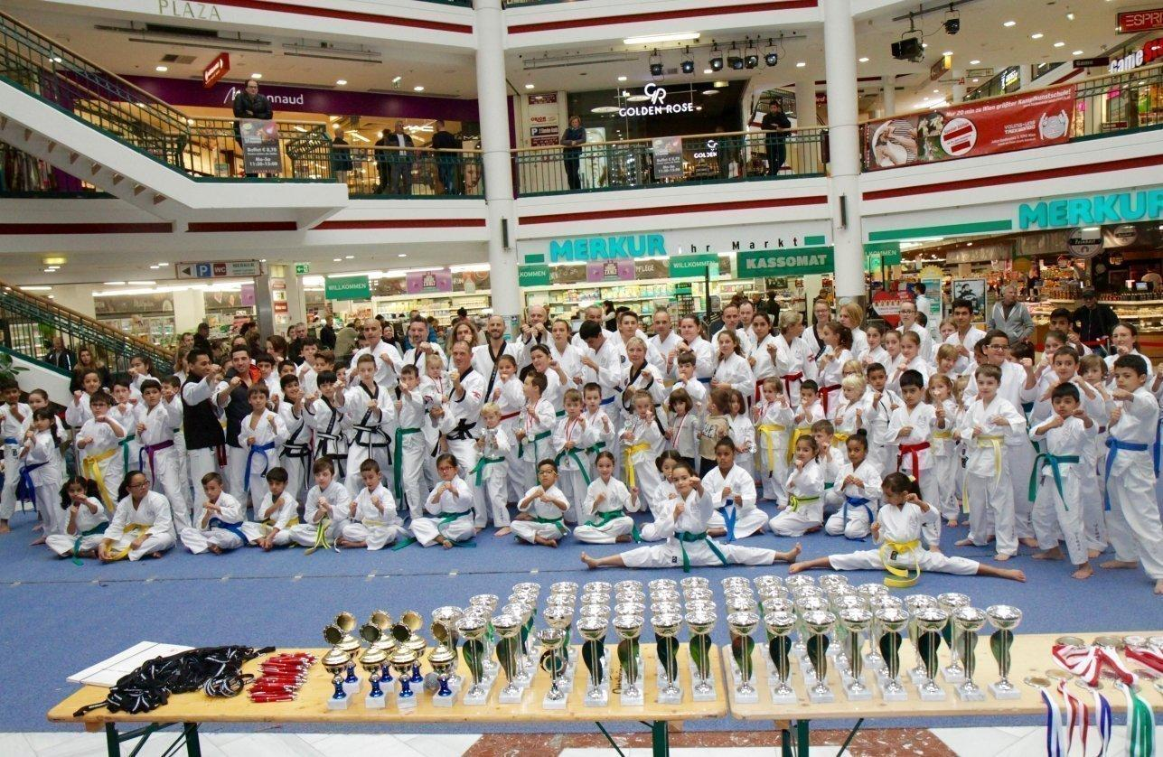 turnier taekwondo