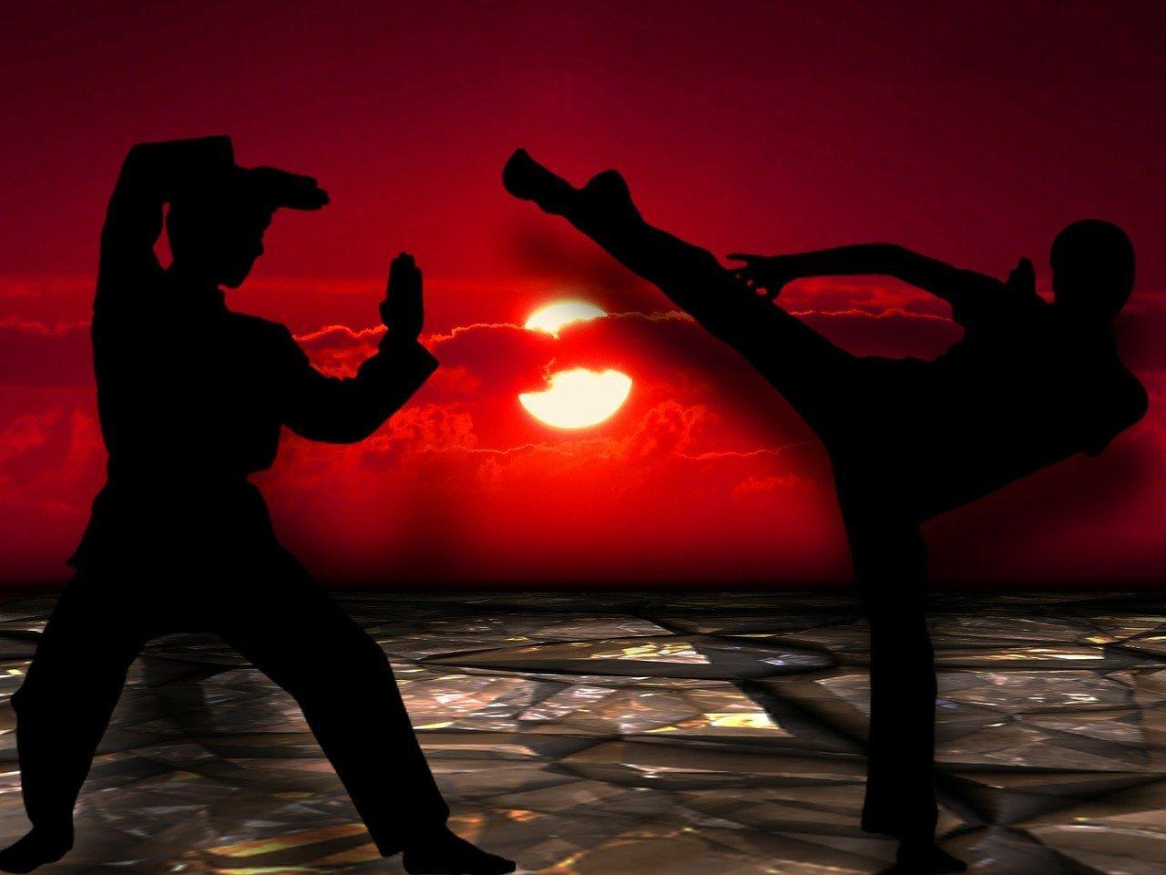 YOUNG-UNG Taekwondo Kampfsport Sportkinesiologie