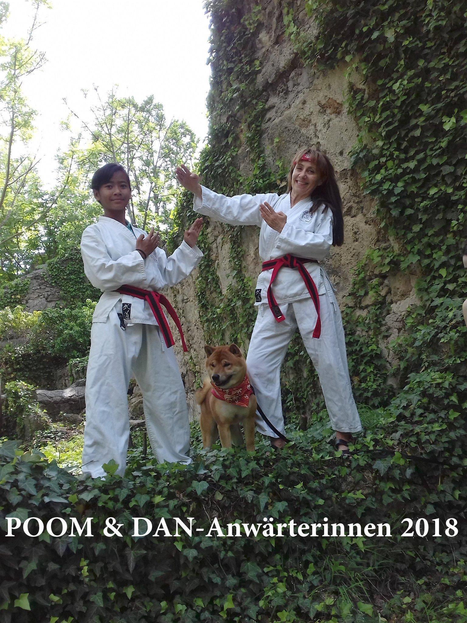 YOUNG-UNG Taekwondo Bulgarien Camp Kampfkunst