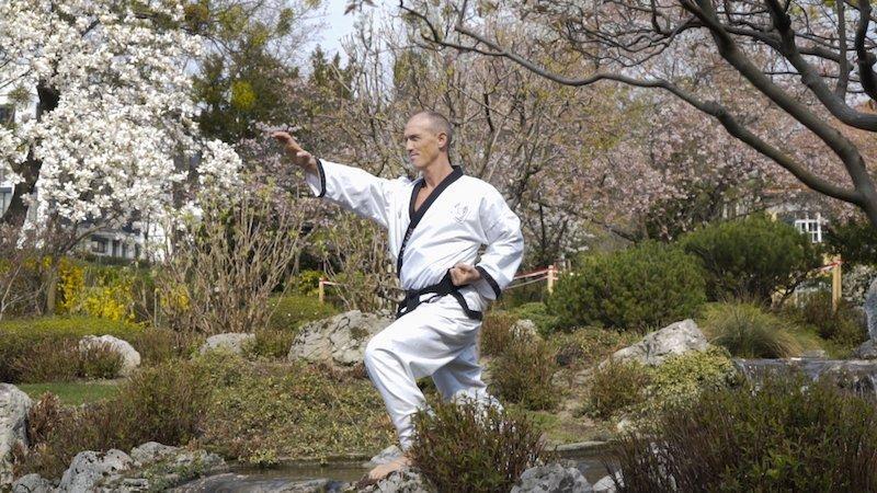 YOUNG-UNG Taekwondo Kimoodo Ausbildung Heilkunst