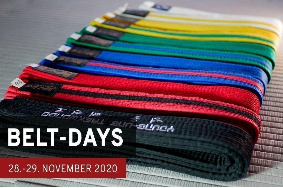 Sujetbild: Belt-Days Workshop