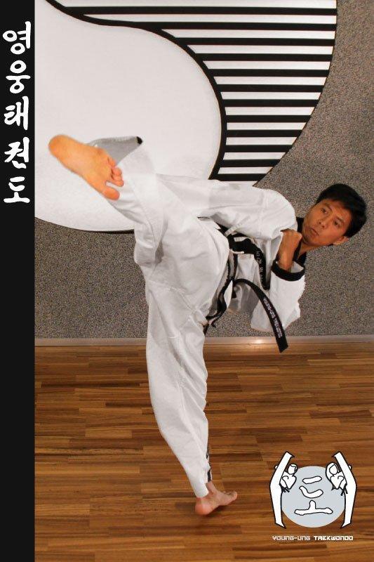 Taekwondo-Trainer in Taekwondo Pose aus Zweigstelle 1120 Wien