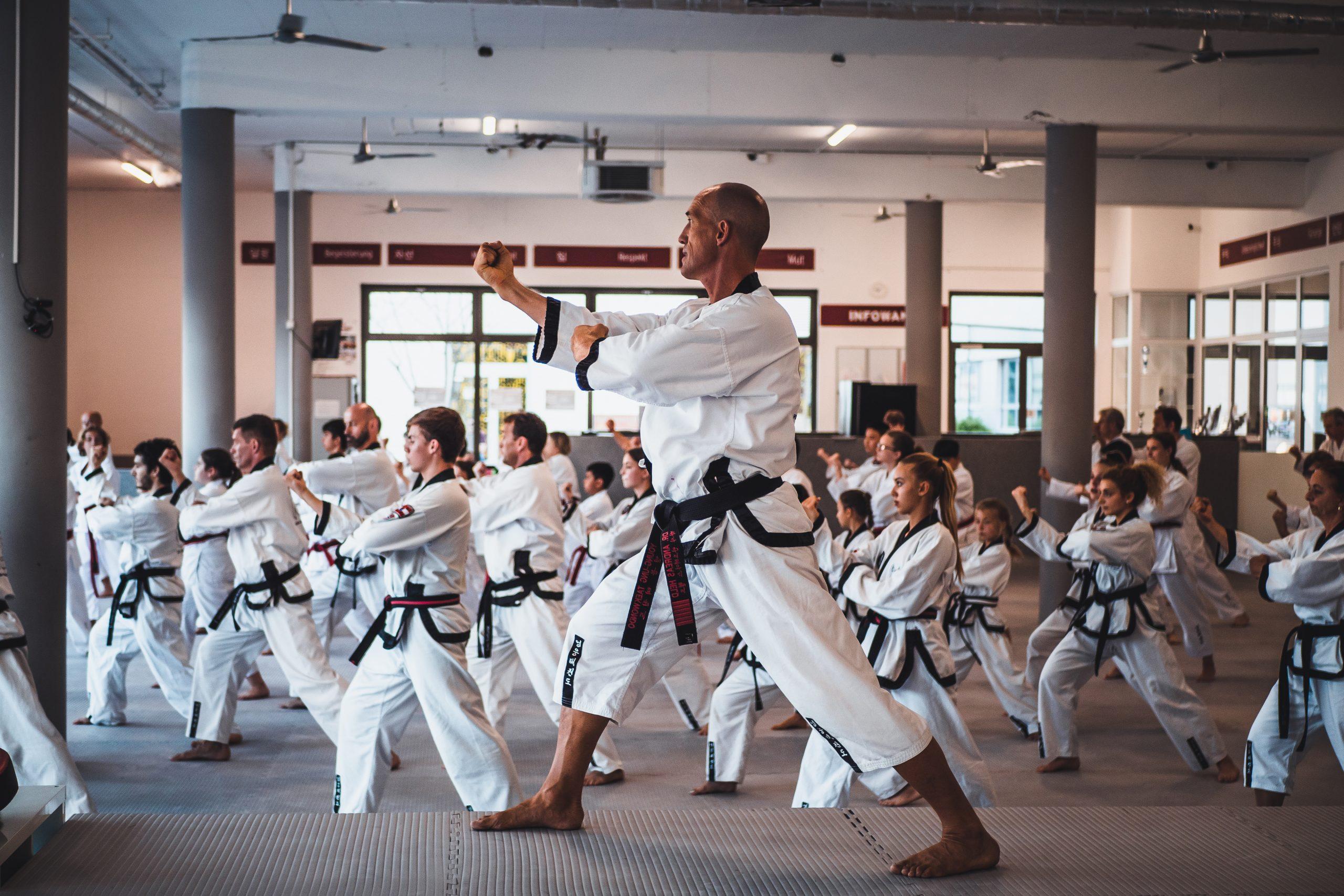 Taekwondo Kämpfer im Schwarzgurt