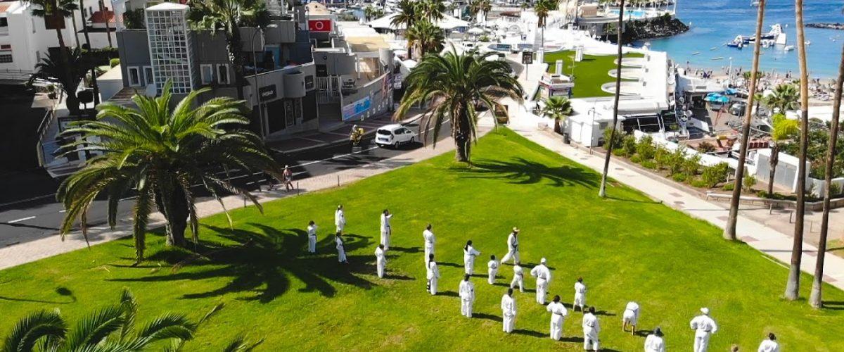 Taekwondo Schüler in Palmenlandschaft am Hafen auf der Insel Teneriffa.